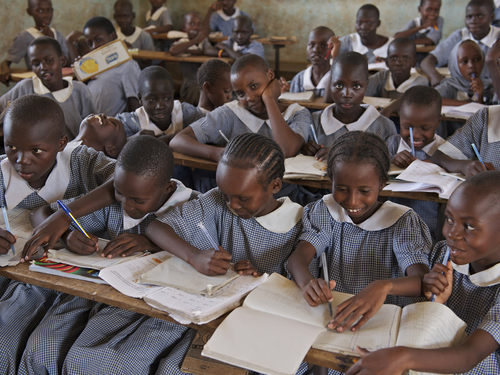 The Platform for Girls' Education