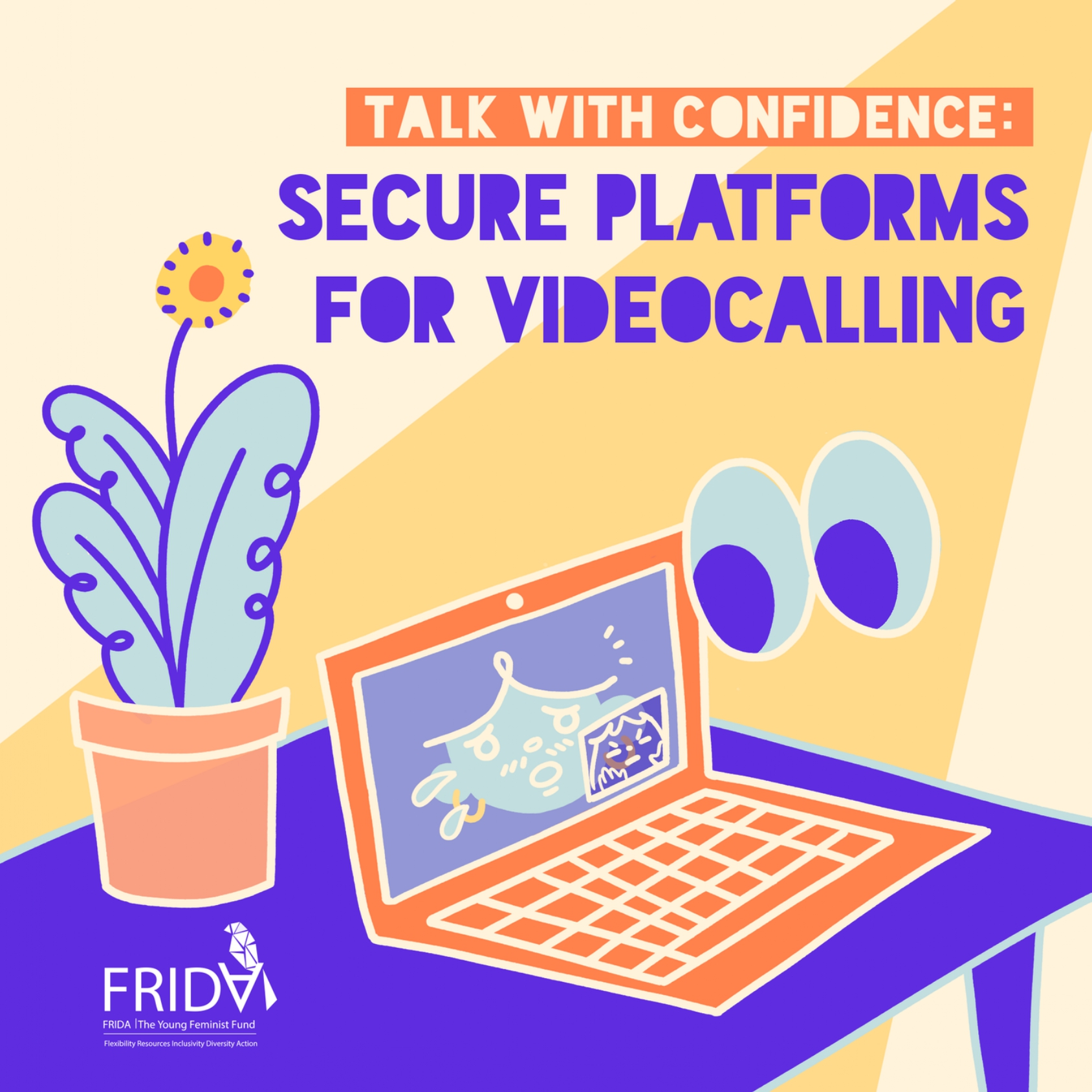 Talk With Confidence: Secure Platforms for Videocalling