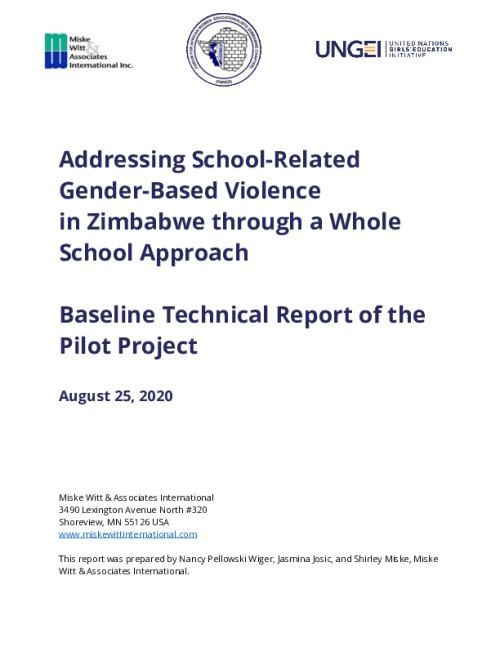 SRGBV Baseline Report