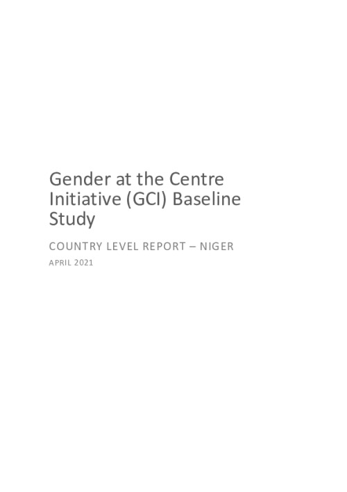 GCI Baseline Study Country Level Report - Niger
