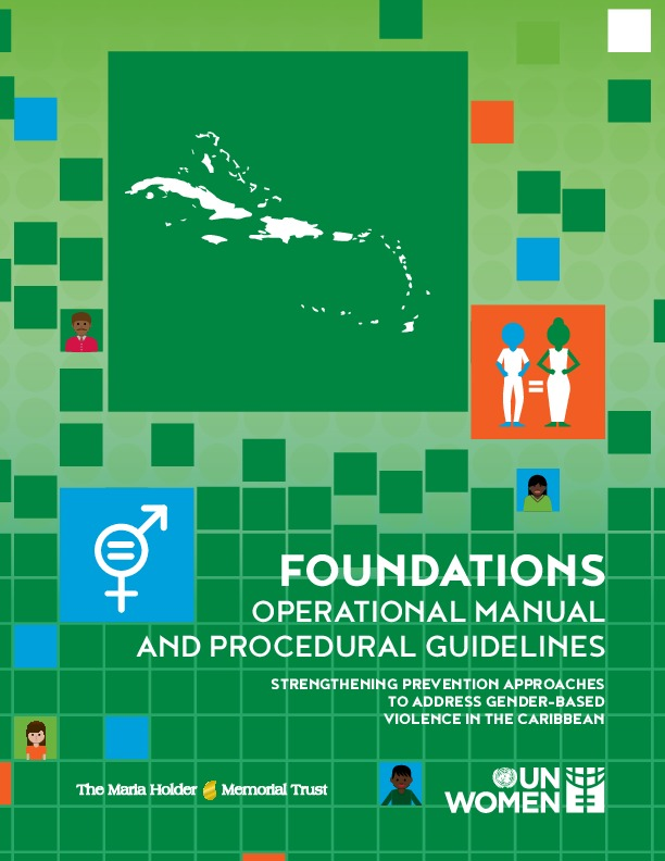 Foundations - operational manual and procedural guidelines